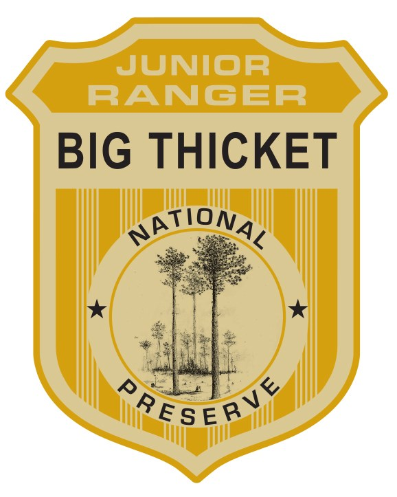 "graphic of junior ranger badge that reads ""Junior Ranger"" ""Big Thicket"" ""National Preserve"""
