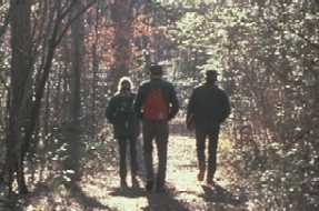 Hikers on a woodland trail