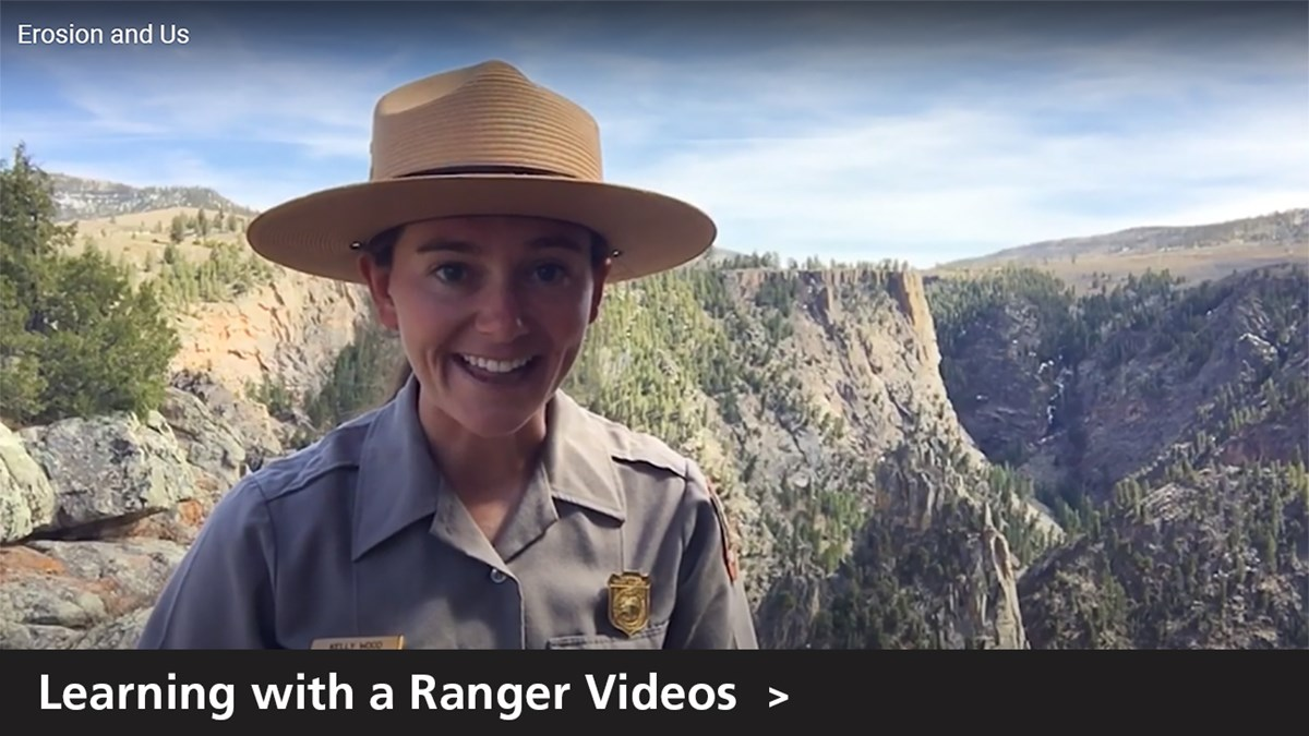 Learning with a Ranger Videos