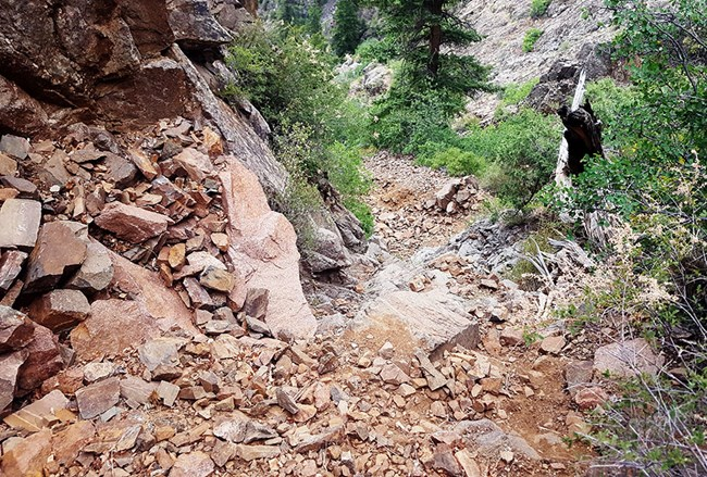 a steep, nearly vertical dirt path covered in loose rock heading into the canyon