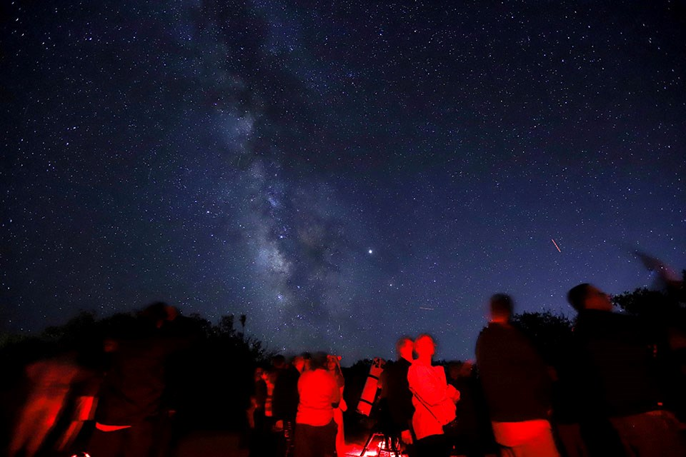 people around telescopes with a starry night sky overhead