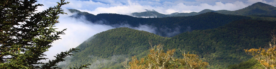 The long vistas are part of a Blue Ridge Parkway experience