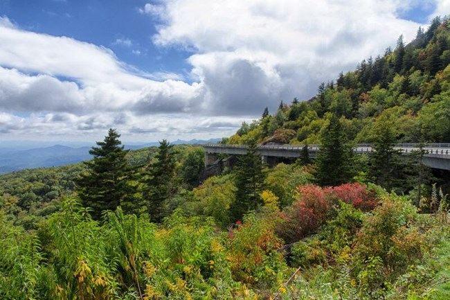 Linn Cove Viaduct immersed in fall colors