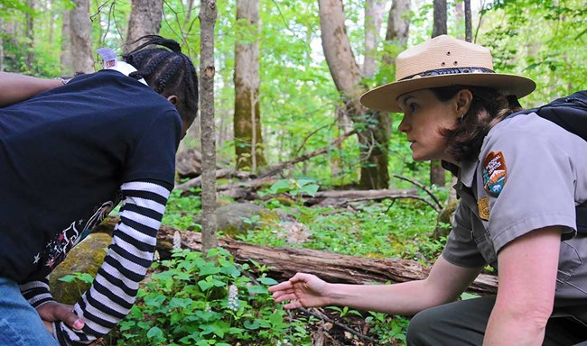 A ranger and child examine a wildflower in the forest
