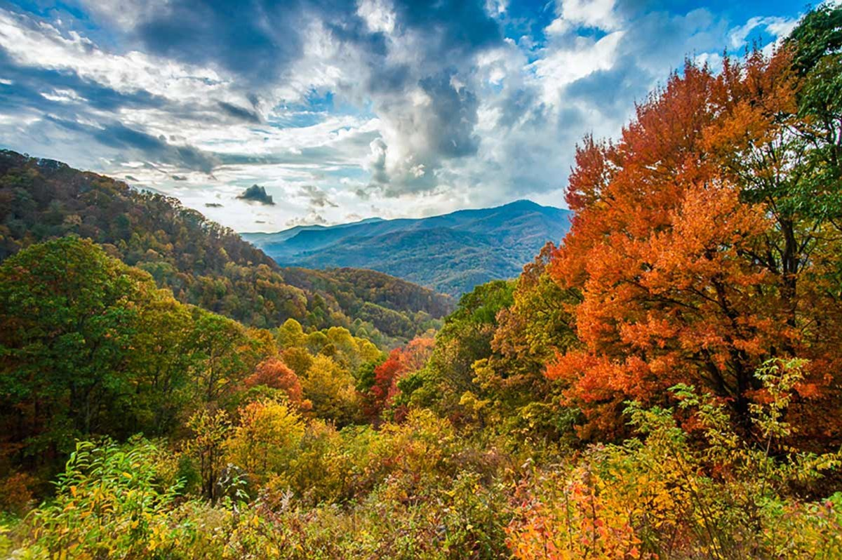 Brilliant orange fall foliage frames a view of distant mountains