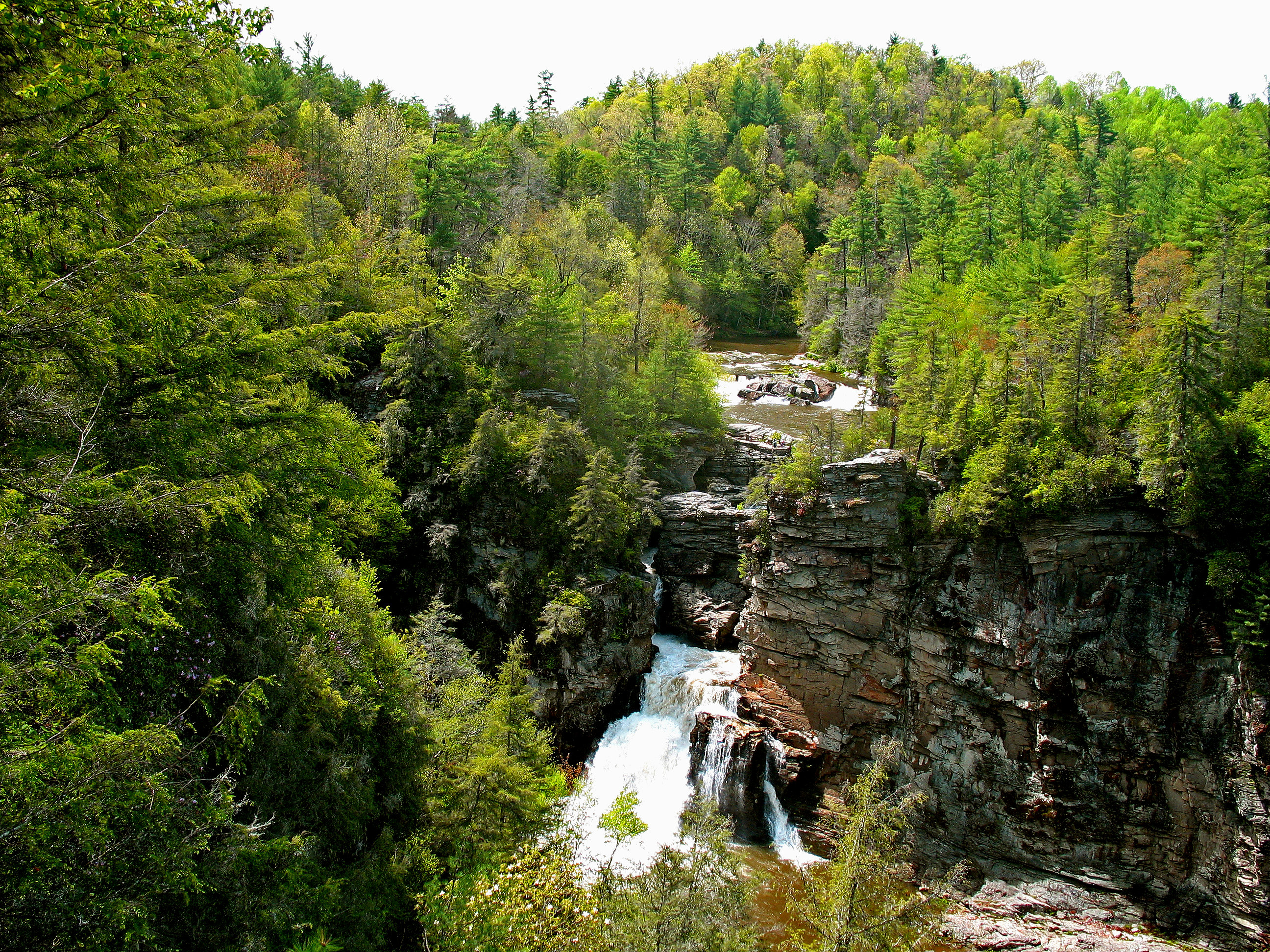 Roaring Linville Falls surrounded by greenery