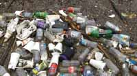 An astounding amount of cans, bottles and beverage cups are collected at a cleanup.