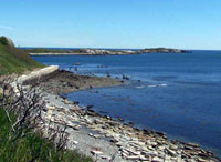 Failed seawall on Great Brewster; quarries produced ballast and stone for seawalls