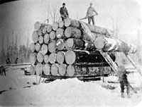 Timberstacks