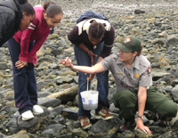 A park education ranger explores the intertidal zone with students.