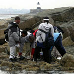 Students Studying the Intertidal Zone