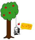 artist's rendition showing an apple falling from a tree onto Isaac Newton's head; discovery of gravity.