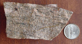 A small piece of Gneiss, with a quarter for size reference