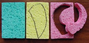a represention of three sponges that can be used to create fossils. The left sponge(blue) is blank for young ideas, the middle sponge (yellow) has a drawing that could be used to represent a tooth. The right sponge (pink) has a