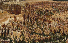 Scenic view of the main amphitheater from Bryce Point with numerous hoodoos visible
