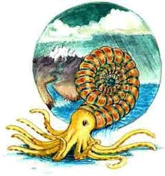 Colorful picture representing the creature Arms Gayleson, an ammonite.