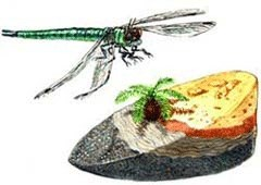 Master Leopold Bigbugh (flying) and Scanner the Cycad (sitting on a rock cross-section)