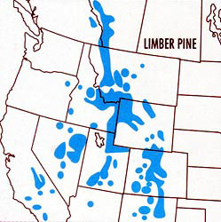Map of the Limber Pine Range