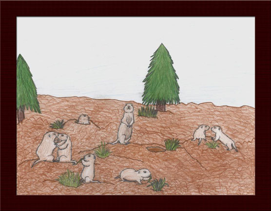 6th grade artist Katy Bair's rendition of Utah Praire Dogs in their natural habitat. Winner of Poster Contest.