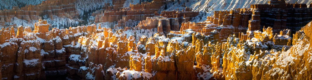 Hoodoos at sunrise.