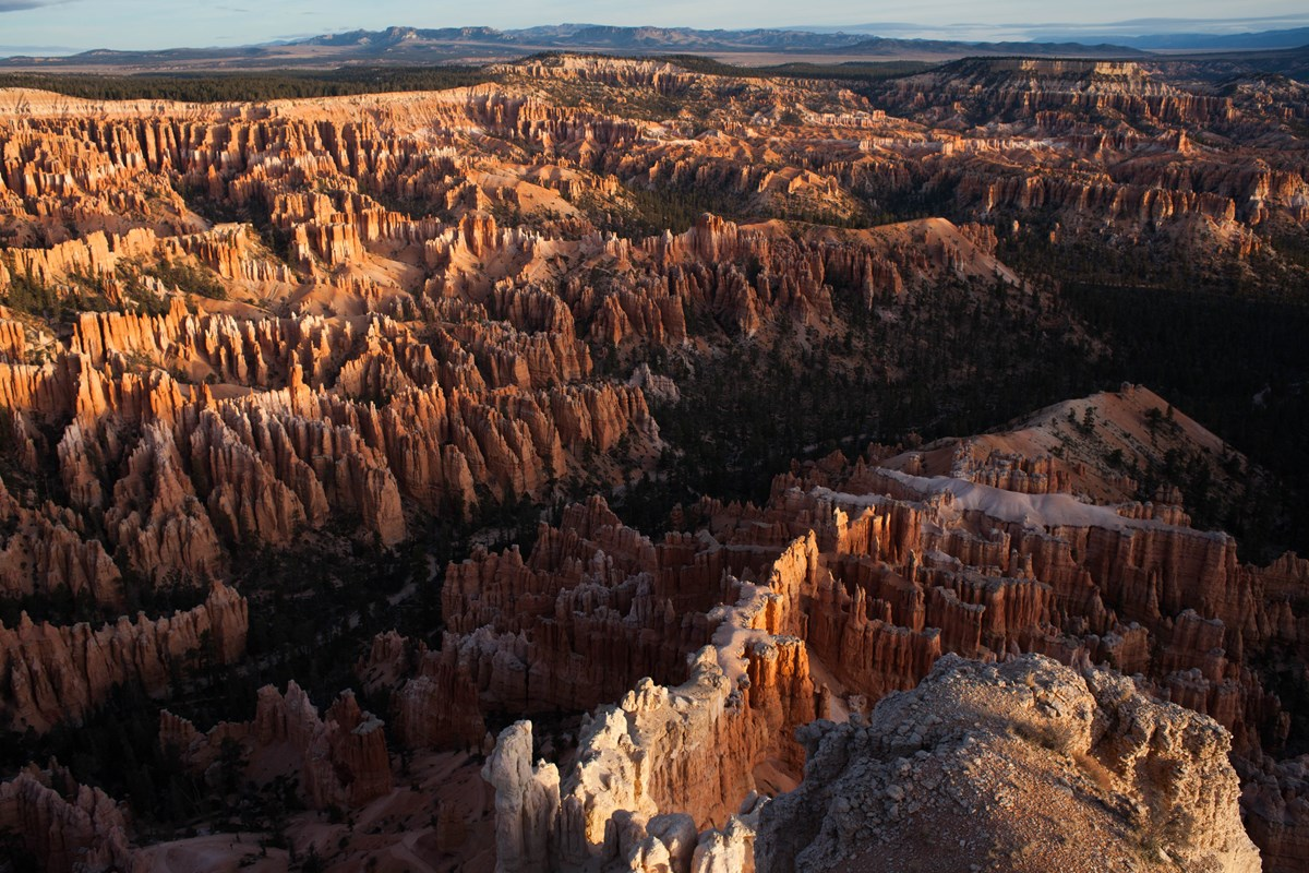 The hoodoos of the Bryce Amphitheater seen from Bryce Point