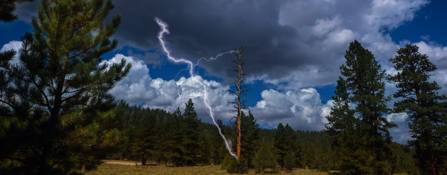 Lightning striking a dead ponderosa pine