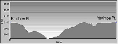 Bristlecone Loop Profile showing elevation changes