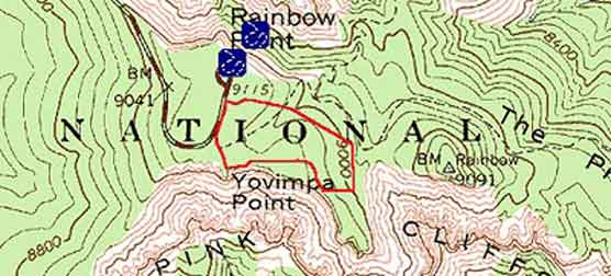 Topographical Image of Bristlecone Loop trail (marked in red)