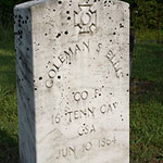 grey grave stone, coleman s. ellis, jun 10 1864
