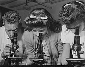 Three African American students using microscopes.