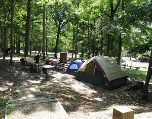 campsite at buffalo point camground