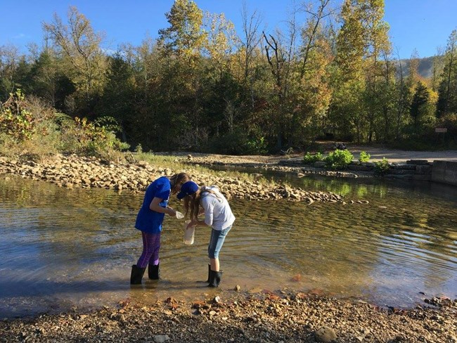Two students examine the Buffalo River for critters.