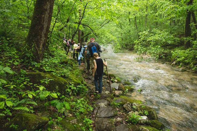 Hikers at Panther Creek