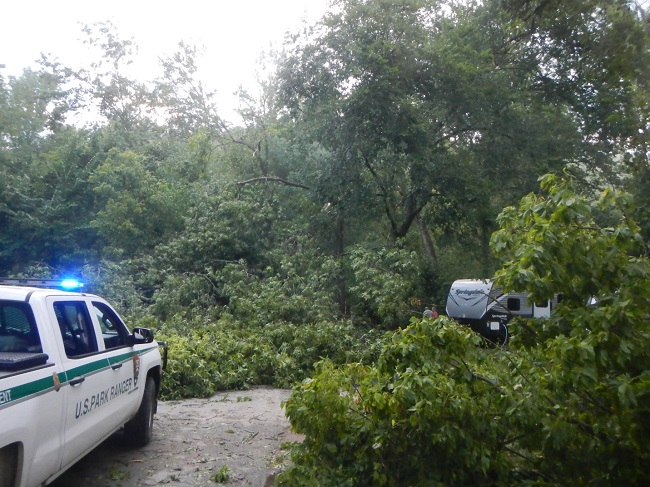 photo of park ranger vehicle at left with large tree down on road
