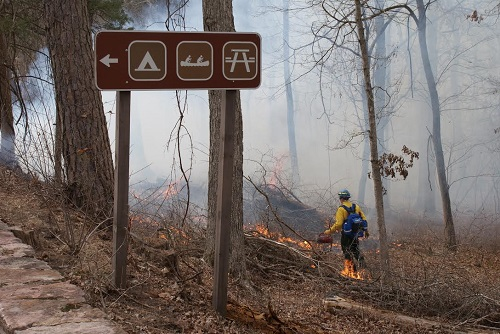 firefighter igniting prescribed fire with drip torch