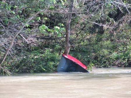 red canoe wrapped around tree