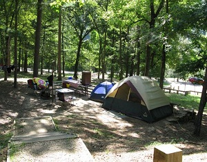 color photo of wooded campsite with tents