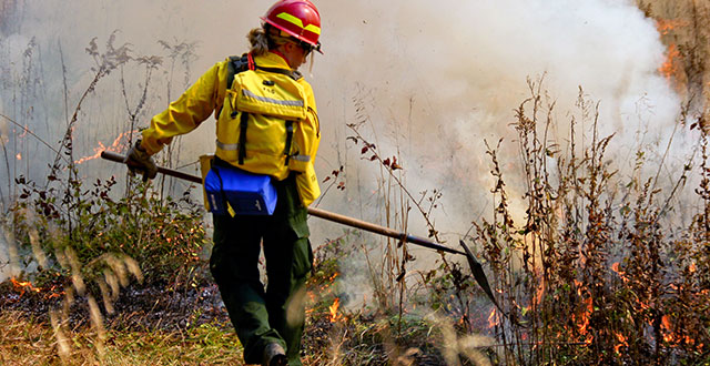 Wildland firefighters fighting back flames on public lands
