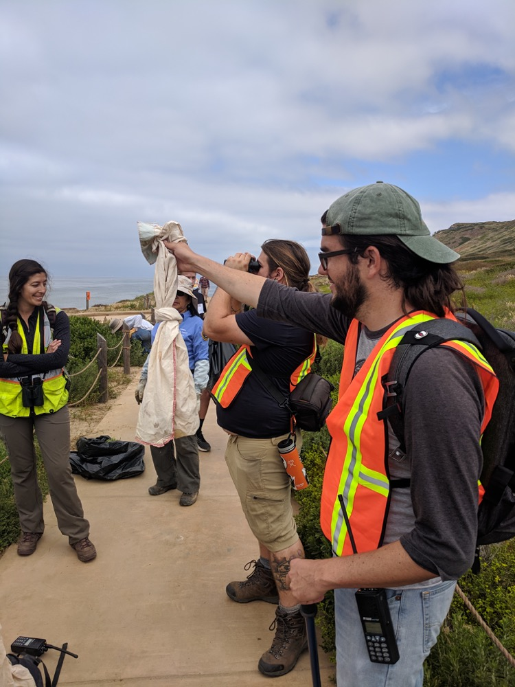 An SDSU herpetologist holds up a canvas bag containing a baby Southern Pacific Rattlesnake while biologists look on. The unharmed snake is being relocated to a location underneath plants that are away from the tidepool trail.