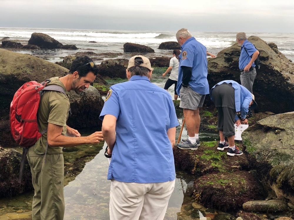 a group of people exploring the tidepools and looking closely at something they found.