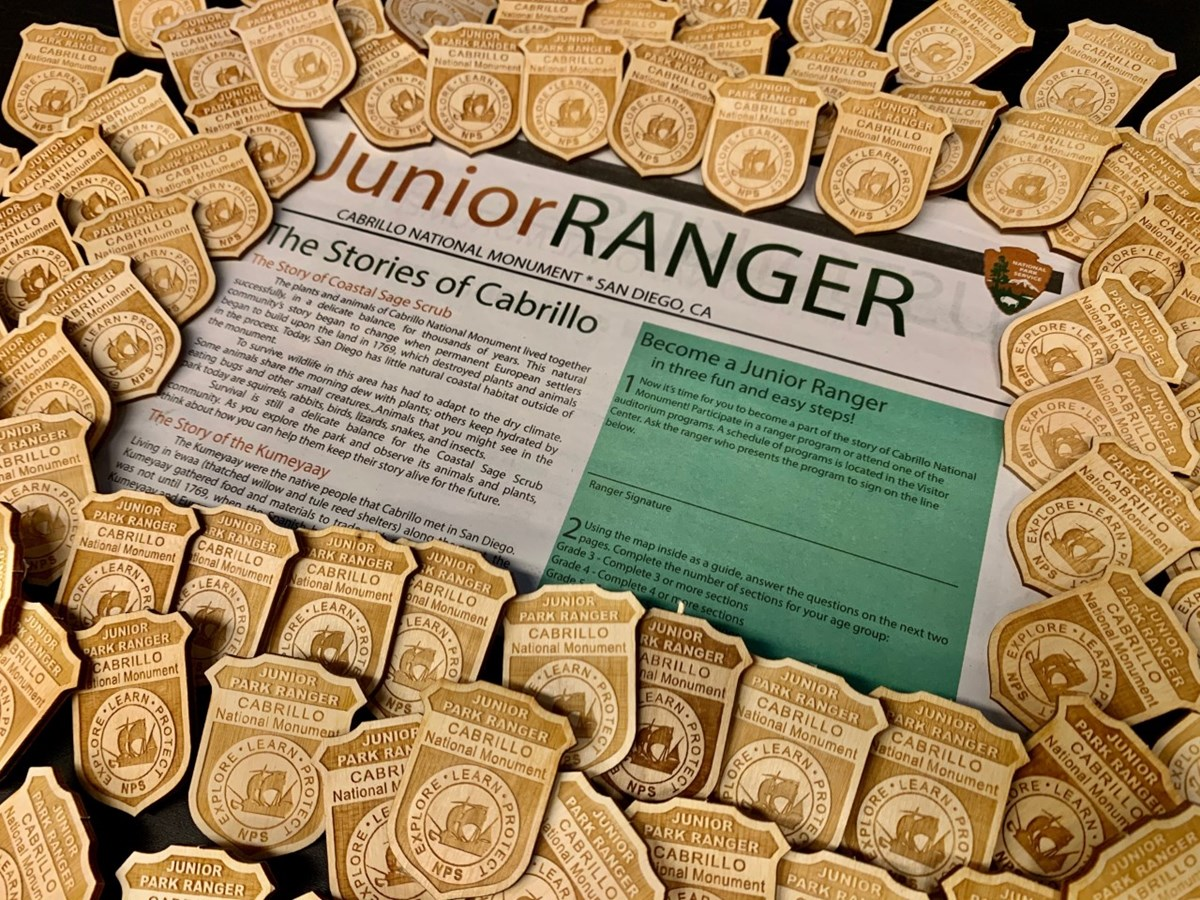 Junior Ranger newspaper surrounded by wooden Junior Ranger badges
