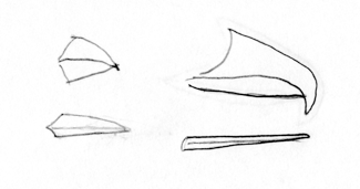 Image adapted from Audubon.org bird guide showing drawing of different type of beaks and/or bills