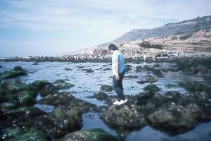 Enjoying the tidepools