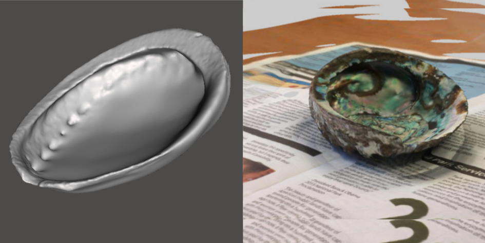 Photo showing 3d model of Green Abalone