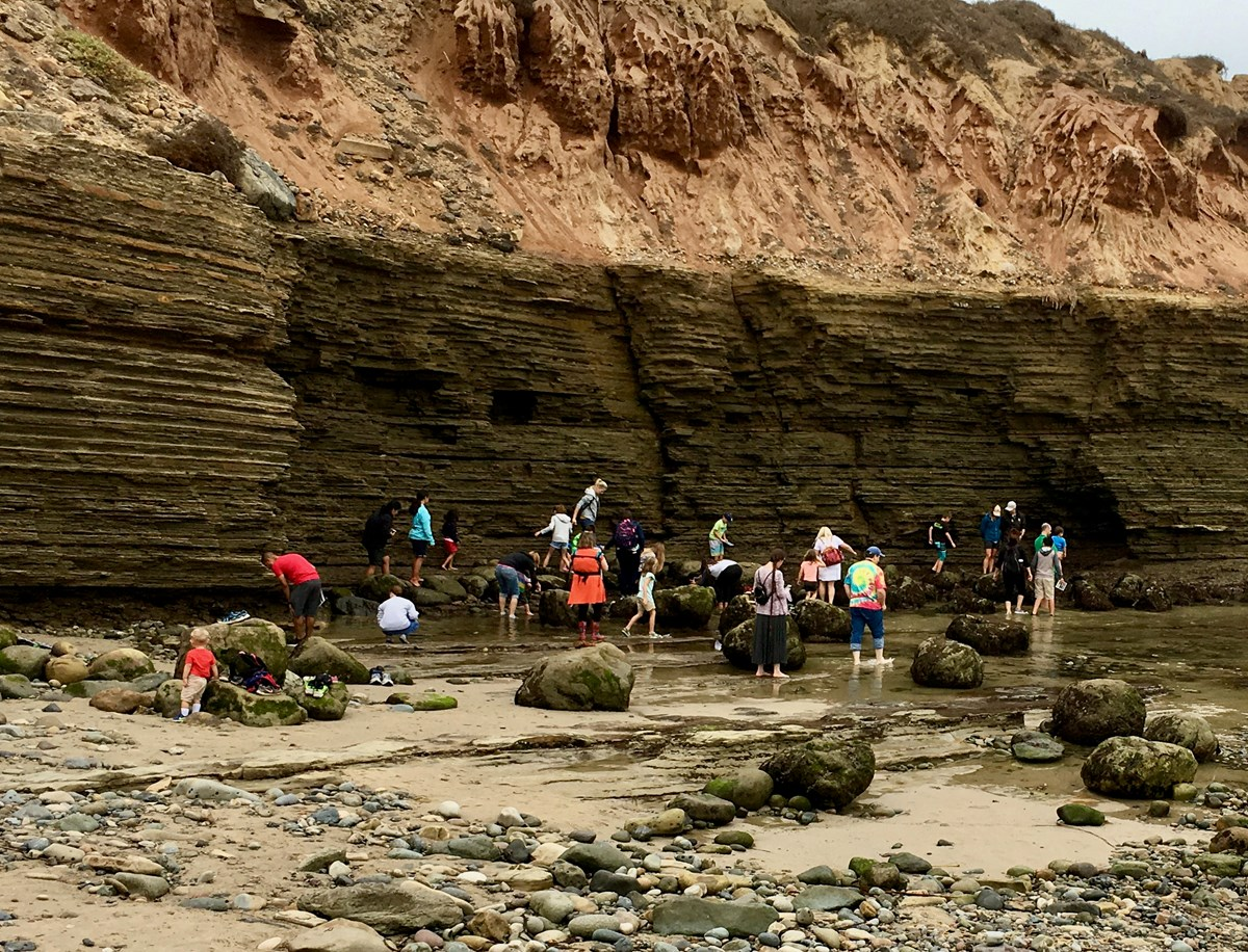 A variety of visitors walking and exploring the tidepools with brown sandstone cliffs in the background