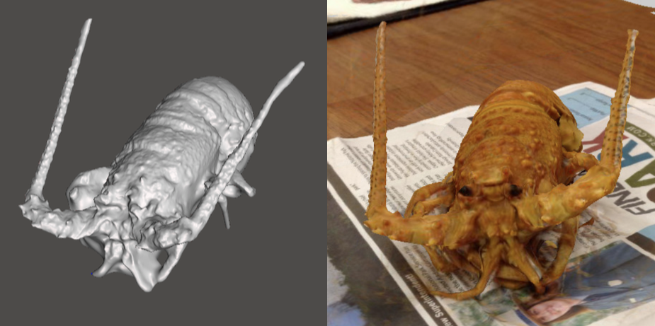 Photo showing 3d model of a Spiny Lobster