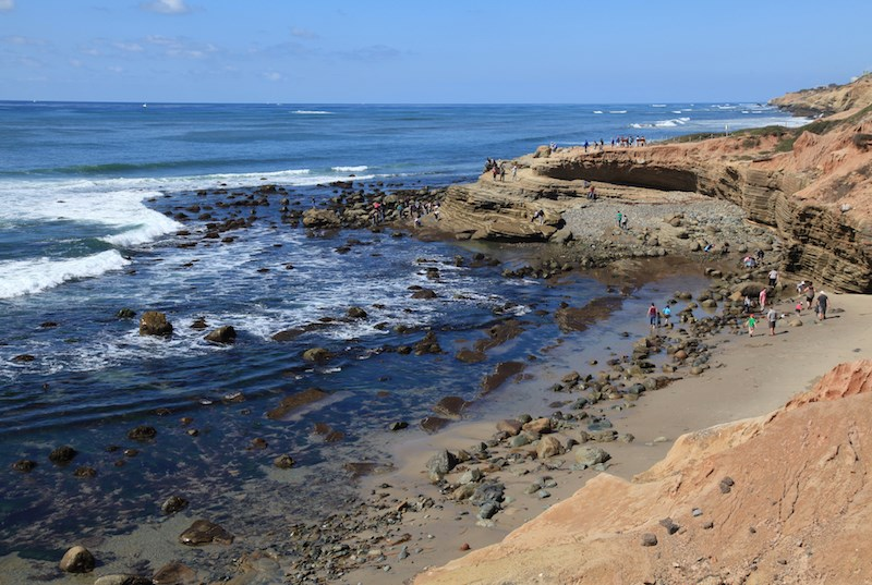 The rocky intertidal zone cabrillo national monument u for Tides for fishing san diego
