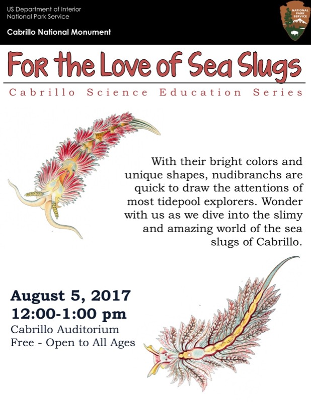 poster for For the Love of Sea Slugs talk