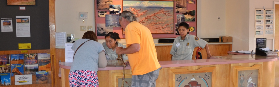 SYEP Volunteer helping visitors