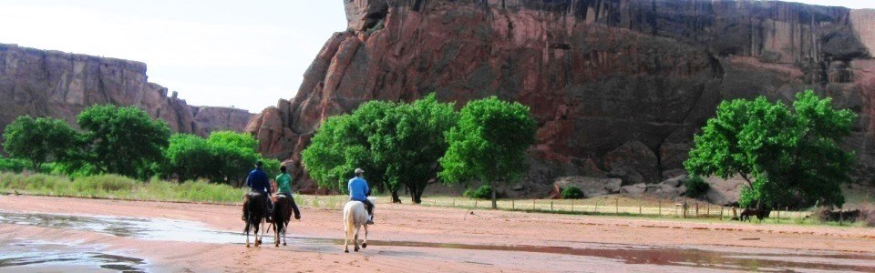 Visitors on horseback tour